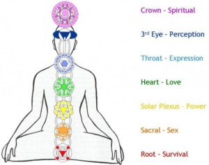 FROM BACKSIDE-7-chakras-in-the-body-symbols-and-meaning-1024x810-meditationgongs.net_-e1346896291631[1]